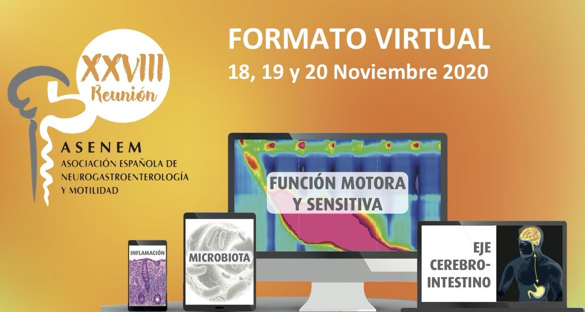 XXVIII Reunión Anual de la ASENEM (Formato virtual)